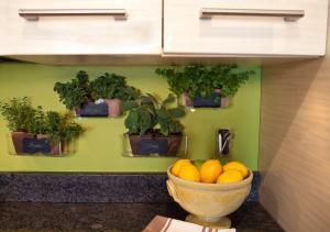Indoor herb garden - smells and looks great!