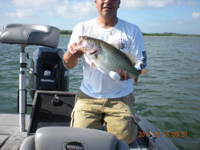 Offshore angler magibraid spectra fiber fishing line 300 for Bass pro fishing line