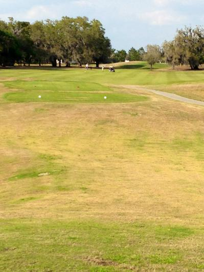 North Shore Golf Course in Orlando, Florida, USA | Golf ...