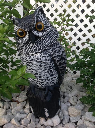 . Easy Gardener Garden Defense Action Owl 8011   The Home Depot