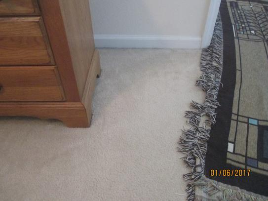 How Much Cost Carpet Cleaning Vidalondon