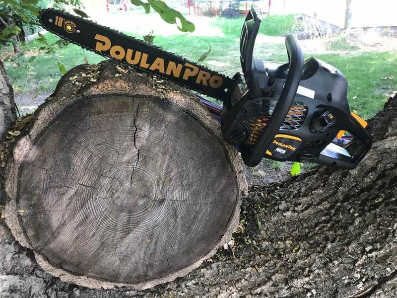 Poulan Pro Chainsaws PR4218