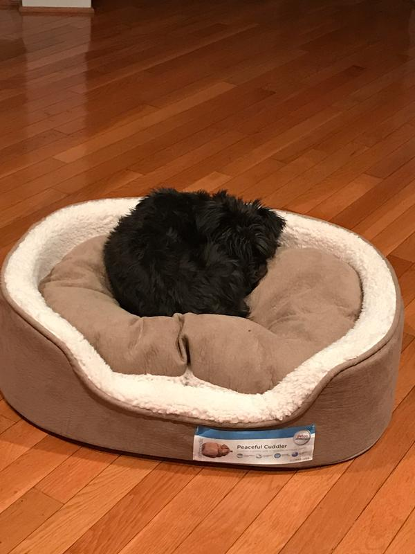 petco dog beds washable - bedding | bed linen