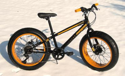 Mongoose Bikes Fat Tire Fat Tire Mountain Bike