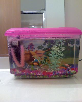 Purchase the dora the explorer pirate aquarium kit for for Self cleaning fish tank walmart