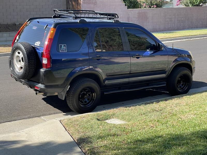 They look great on my Crv
