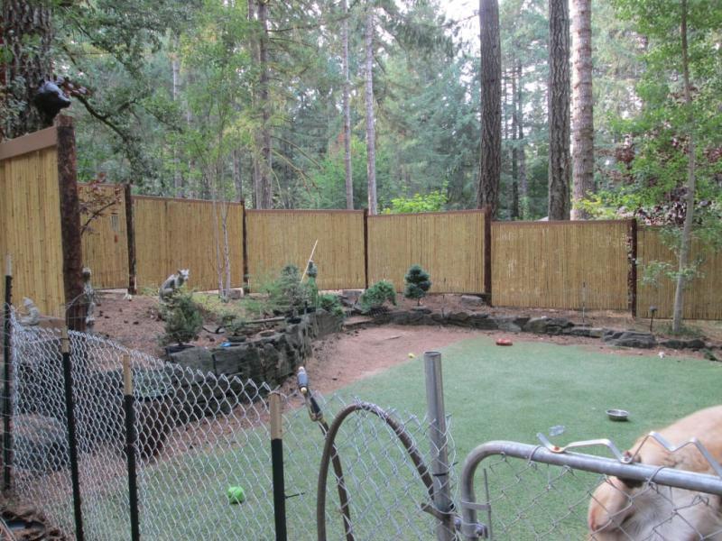 Cali Bamboo Fencing - 4ft x 4ft Natural 1 Inch Diameter - Cali Bamboo