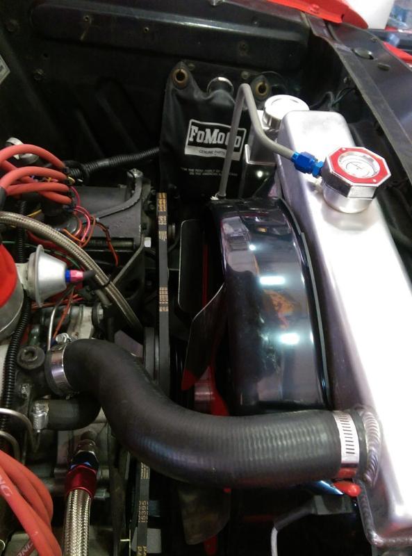 """Mustang Fan Shroud Plastic 3-1//2/"""" Wide 260//289 1965-1966"""