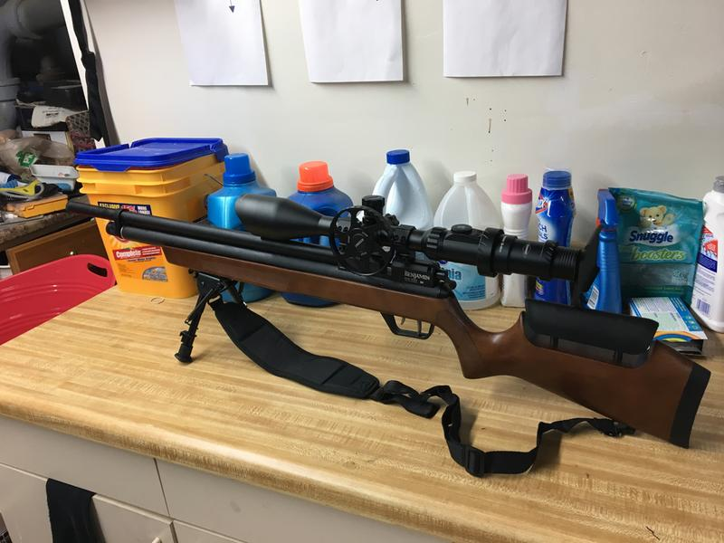 Marauder Rifle Wood Stock