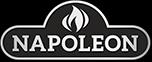napoleongrills.com