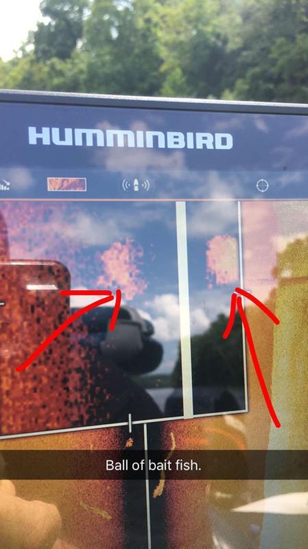 Humminbird Helix 5 Not Reading Depth