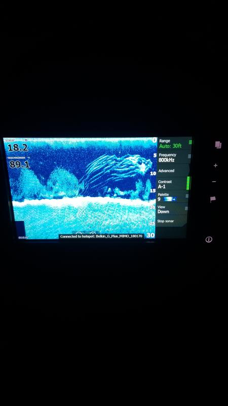 Lowrance Elite-7 Ti Mid/High/DownScan Fishfinder/Chartplotter | Bass