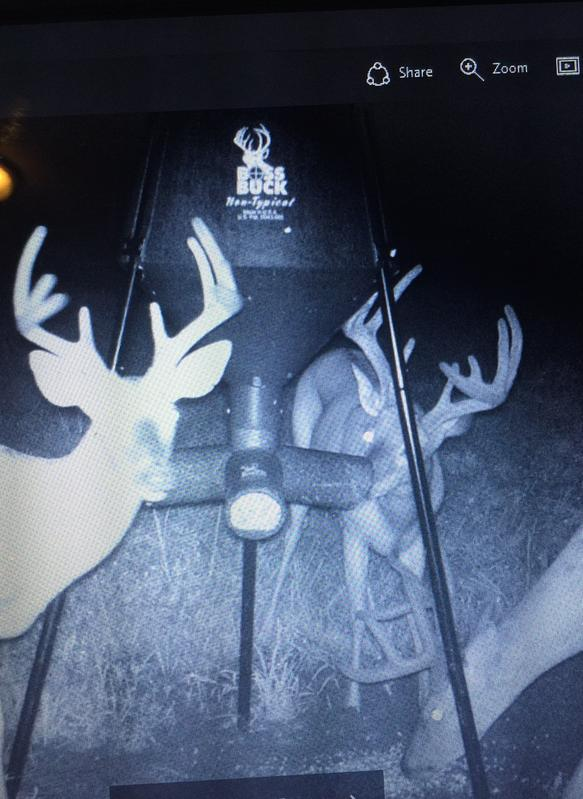classifieds expired buck la sportsman index lpca sale louisiana boss for feeder