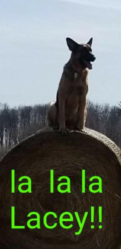 Mom's farm girl!
