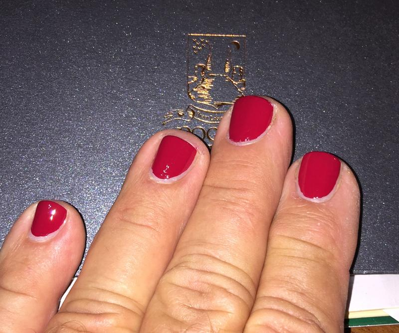 fishnet stockings - spicy dark red nail polish & nail color - essie