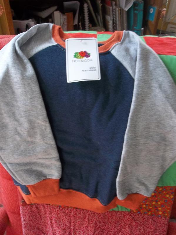 Fruit of the Loom Childrens Big Boys Raglan Sleeve Sweatshirt