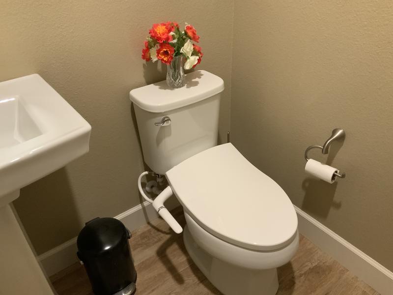 Nicole Close Coupled entièrement retour à Mur Toilette Pan WC Quick Release Soft Siège