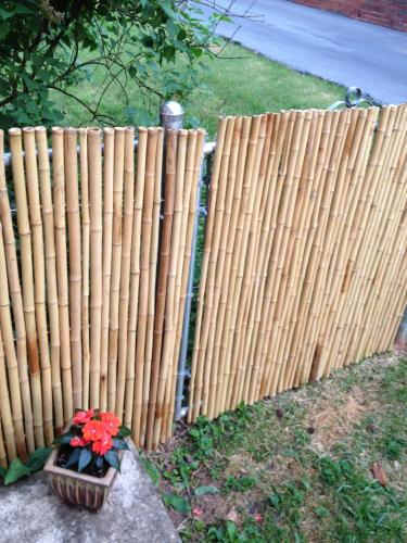 Backyard X-Scapes backyard x-scapes 4 ft. h x 8 ft. w x 1 in. d natural rolled bamboo