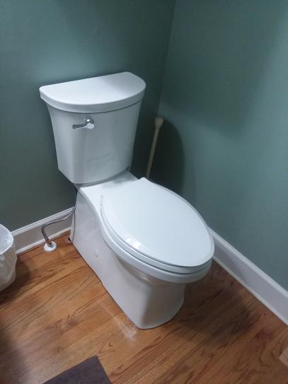 newly installed Kohler Valiant.  Open in new tab to see entire toilet