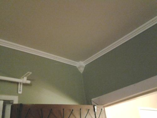 Royal Mouldings 9 16 In X 1 5 8 In X 8 Ft Pvc Composite White