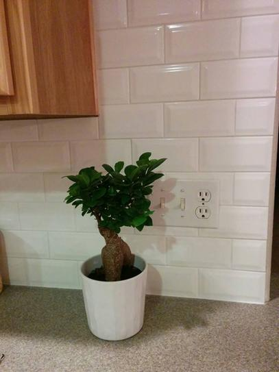 Merola Tile Park Slope Subway Beveled Glossy White 3 In X 6 Ceramic Wall 17 Sq Ft Case Wxr3psbw At The Home Depot Mobile