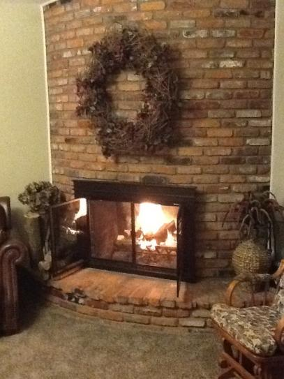 Pleasant Hearth Fenwick Large Glass Fireplace Doors Fn 5702 At The