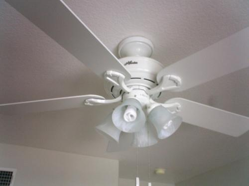 Hunter augusta 52 in white indoor ceiling fan 21363 at the home customer images 4 mozeypictures Images