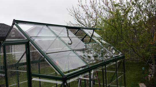 Palram Harmony 6 ft  x 8 ft  Polycarbonate Greenhouse in