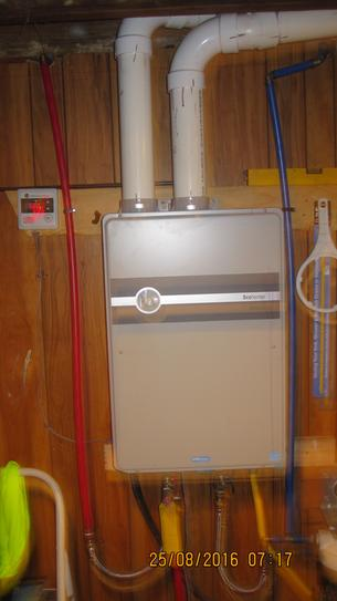 Rheem Performance Platinum 9 5 Gpm Natural Gas High Efficiency Indoor Tankless Water Heater Ecoh200dvln 1 At The Home Depot Mobile