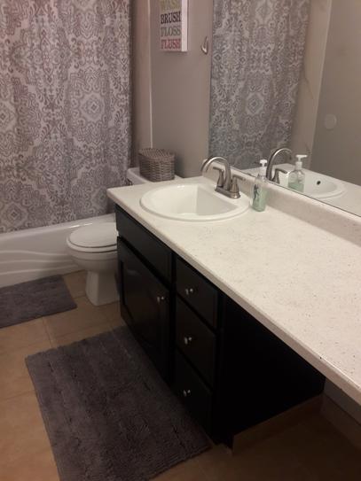 Designs Decorating Bathroom Counte E A on