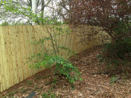 Backyard X Scapes Rolled Bamboo Fencing backyard x-scapes 1 in. d x 6 ft. h x 8 ft. w natural rolled bamboo