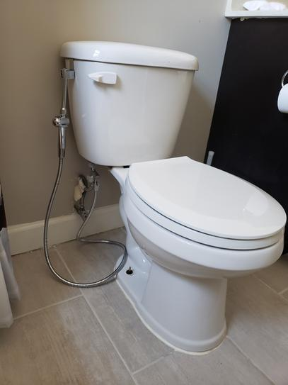 Rinseworks Aquaus 360 Premium Hand Held Bidet With Patented Dual Spray Pressure Controls In Chrome Nsf Certified Abt 360 At The Home Depot Mobile