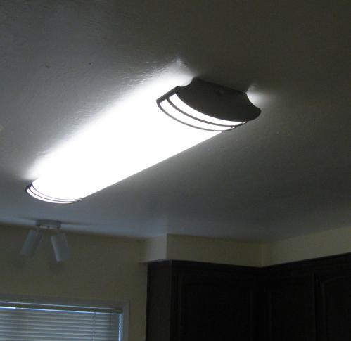 Lithonia Lighting Futra 2-Light Brushed Nickel Fluorescent Ceiling ...