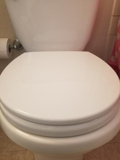 TOTO SoftClose Round Closed Front Toilet Seat in Cotton