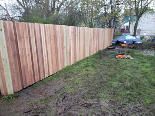 Cedar Fence #2