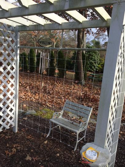 completed and wrapped to the side trellis