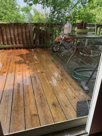 This is the all n one cleaner. The deck was black from dirt moss and weather