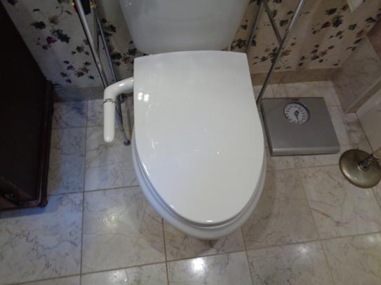 Groovy Kohler Puretide Non Electric Bidet Seat For Elongated Machost Co Dining Chair Design Ideas Machostcouk
