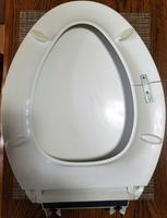 Astounding Quiet Close Grip Tight Cachet Plastic Elongated Slow Close Toilet Seat Ibusinesslaw Wood Chair Design Ideas Ibusinesslaworg
