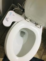 Squatty Potty White Toilet Mounted Bidet At Lowes Com