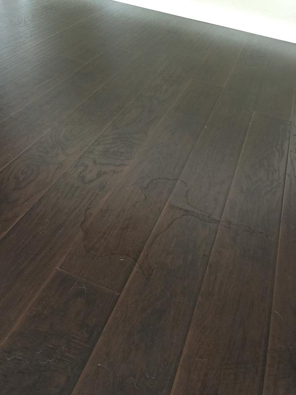 Select Surfaces Laminate Flooring Brazilian Coffee Reviews