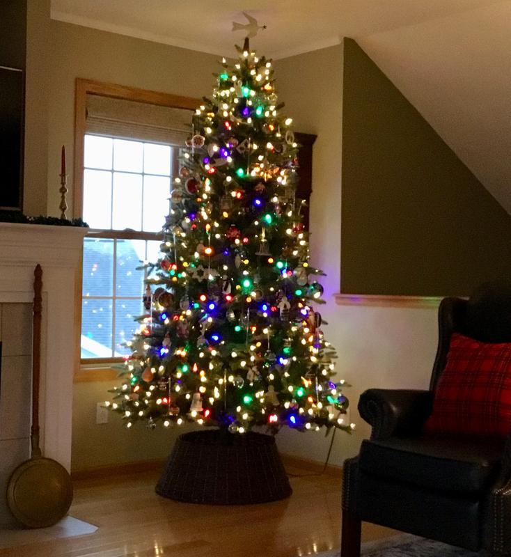 Member S Mark 7 5 Douglas Fir Christmas Tree Sam S Club