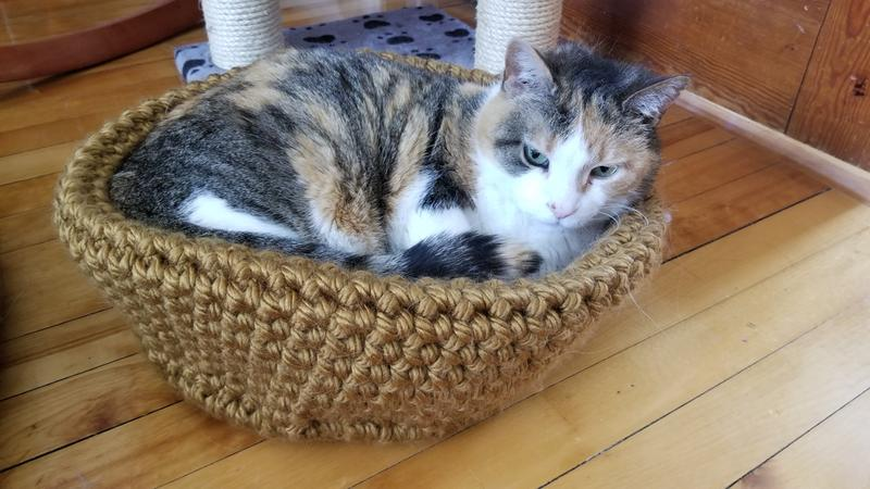 The 3 Best Crochet Cat Beds FREE Patterns of 2020 - Pet Loves Best | 450x800