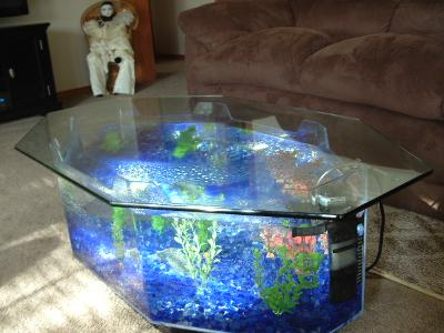 Octagon aquariums for sale 1000 aquarium ideas for Hexagon fish tank lid