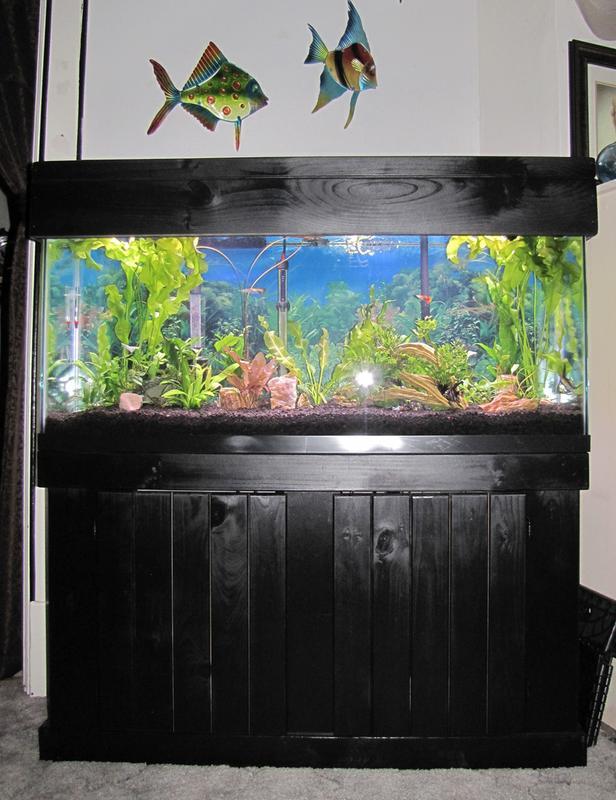 Aqueon Classic Black Pine Aquarium Stand 55 Gallon Petco