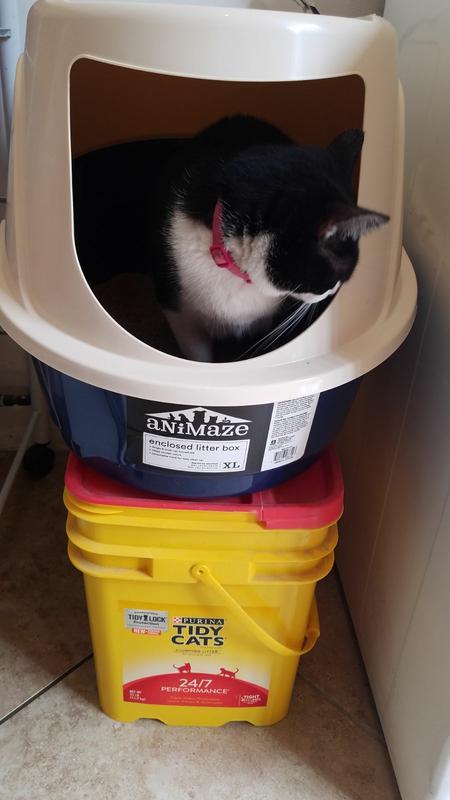 Litter Boxes Animaze Enclosed Cat Litter Box X-Large Pet