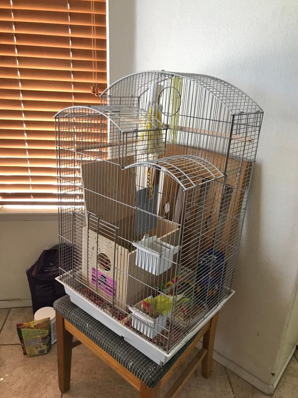 All Living Things® CityScape Bird Cage