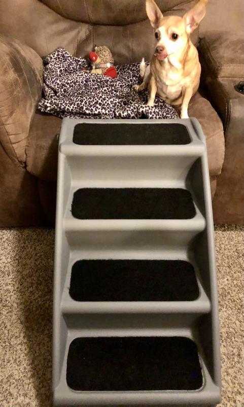 Premier Pet Steps DS2sOEA Raised Panel Dog Steps