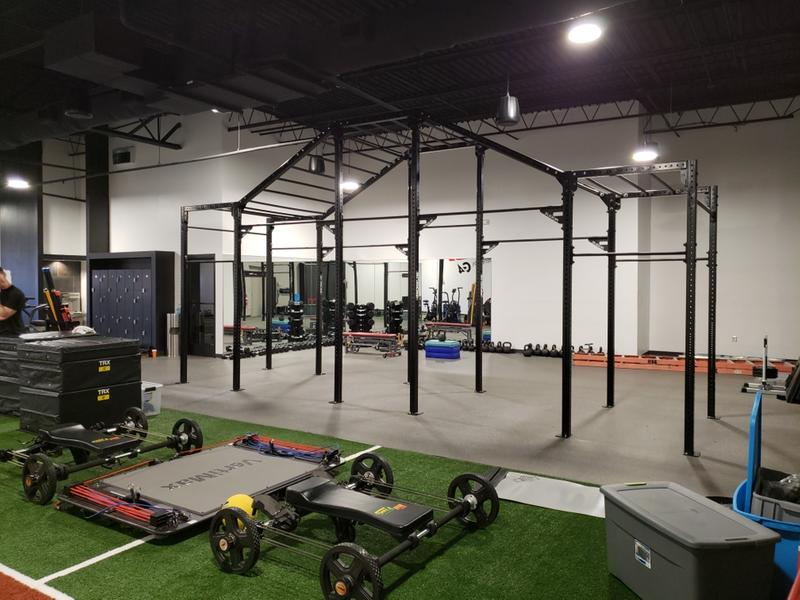 Monster lite monkey rig 2.0 rogue fitness