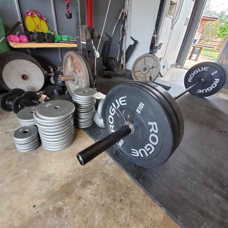 Rogue echo bumper plates rogue fitness